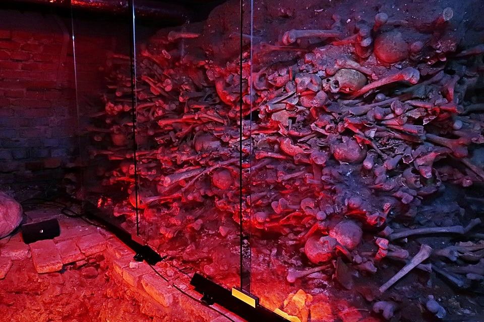 Ossuarium w Piwnicy Romańskiej - zdjęcie