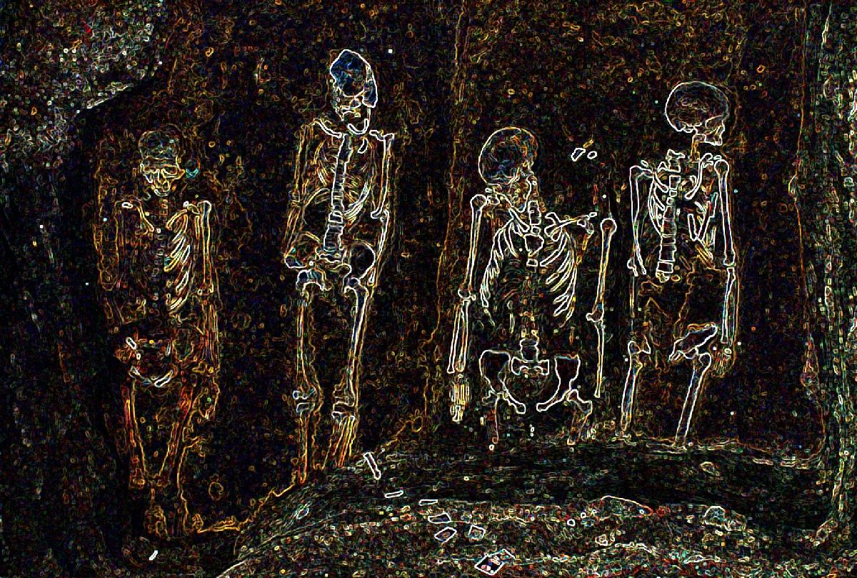 szkielety ksiazka