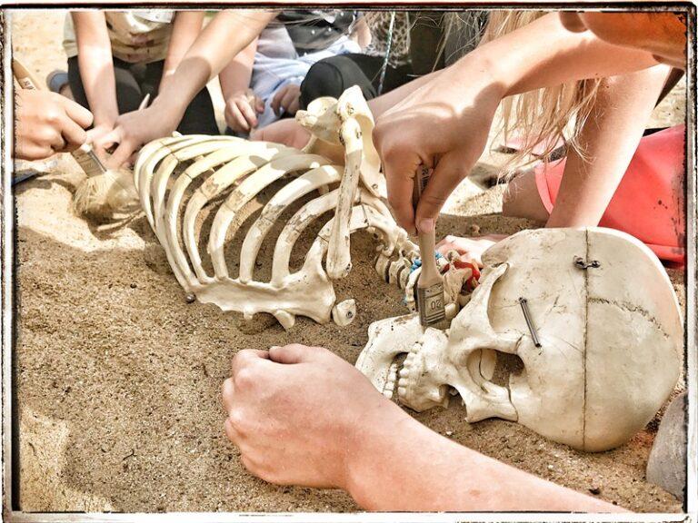 Archeolożka Zosia 2