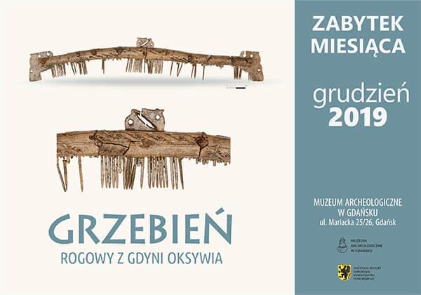 grzebień rogowy z Gdyni Oksywia